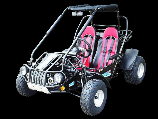 TrailMaster 300XRS
