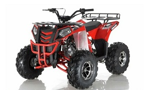 APOLLO COMMANDER DLX 125CC ATV w/Upgraded Chrome Rims, Auto With Reverse 4-Stroke, Single Cylinder, OHC on Sale !