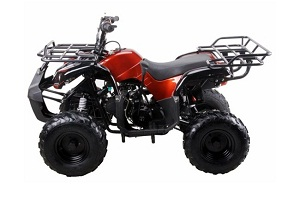 coolster 125cc utility max kids atv