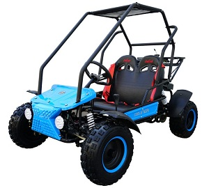Coolster GK-6125B 125cc Go Kart, Fully-Automatic, Single Cylinder, 4-Stroke, Air-Cooled, Electric Start