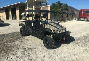 Buy TRAILMASTER CHALLENGER 150X DELUXE UTV For Sale
