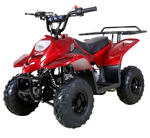 taotao boulder b1 110cc atv automatic transmission remote control rear rack
