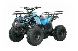 kodiak-hd125 semi-auto atv mid size