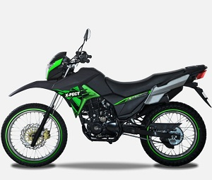 LIFAN X-PECT 200 YEAR 2019 FUEL EJECTED, AIR COOLED, 5 SPEED/MANUAL