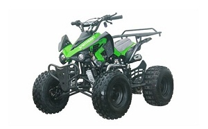 raptor-hd 125cc with reverse mid size atv