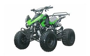 raptor-hd 125cc with reverse mid size atv