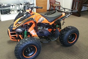 RPS 200DFAVB 169cc Horizontal Type ATV