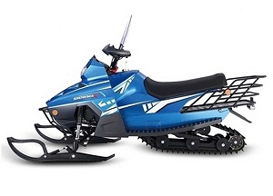TaoTao SnowLeopard Snowmobile - Free Shipping