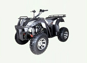 TaoTao BULL 200 169CC, Air Cooled, 4-Stroke, 1-Cylinder, Automatic