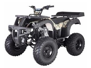 ATV RHINO 250