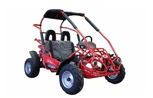 FREE SHIPPING !! Trail Master 200cc Gokart Type MID XRX-R  (California Legal) FREE SHIPPING