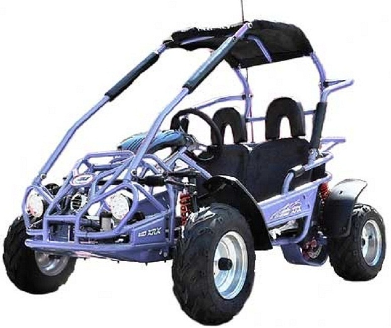 Trail Master Gokart Type MID XRX