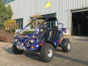 Buy Trail master 300XRX-E EFI Go Kart, Fully Automatic With Reverse Engine, Liquid Cool Efi (Fuel Injection) sale at online - Arlingtonpowersports.com
