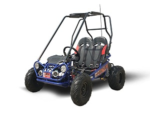 TrailMaster Mini XRX/R+ A Upgraded Go Kart