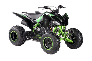 Vitacci Pentora 200 EFI Full Size 176cc ATV